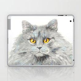 Zelda Laptop & iPad Skin