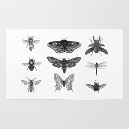 Insect Illustration Collection Rug