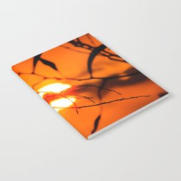Beautiful Sunset Notebook