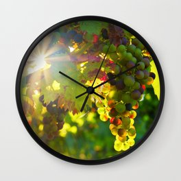 Wine Grapes in the Sun Wall Clock