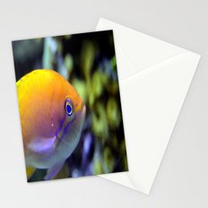 Hey fish!  Stationery Cards