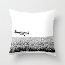 Plane Landscape Throw Pillow