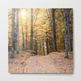 A Walk Through A Dream Forest Metal Print
