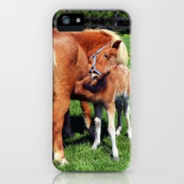 Mare feeding her foal iPhone Case