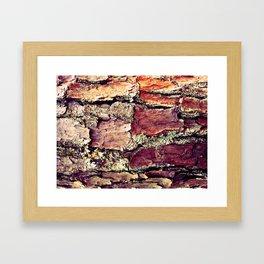 Rhytidome 1 Framed Art Print