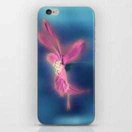 Mystical Flying Carpet iPhone Skin