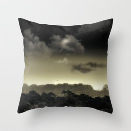 Stored in the Cloud Throw Pillow