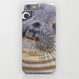 Seal Face Funny Pinnipeds Afraid Mistake Caught Act iPhone Case