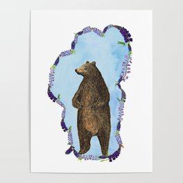 Tahoe Lupine Bear Poster