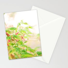 Dream leaves Stationery Cards