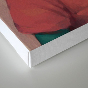 Illuminated Boy Canvas Print