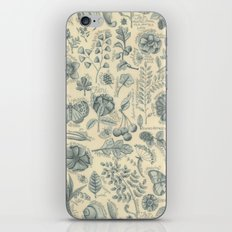 Garden Notes iPhone & iPod Skin