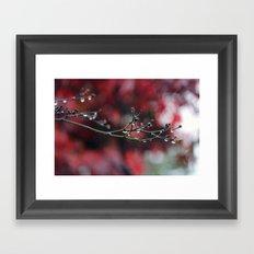 November Rain and Acer Bokeh Framed Art Print