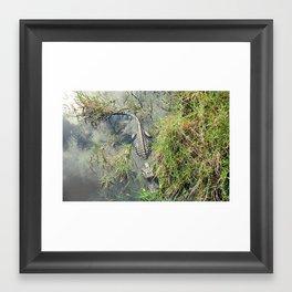 Florida Wildlife Framed Art Print