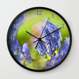 Blue Muscari Mill flowers close-up in the spring Wall Clock