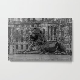 Trafalgar Square Lion London England Metal Print