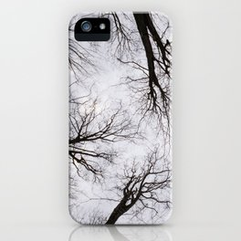 Moody Forest iPhone Case