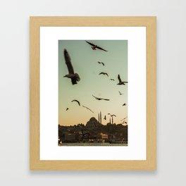 Flying peacefully Framed Art Print