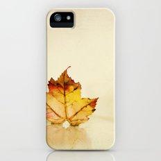 Maple grunge iPhone (5, 5s) Slim Case