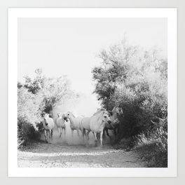 horse print #1 Art Print