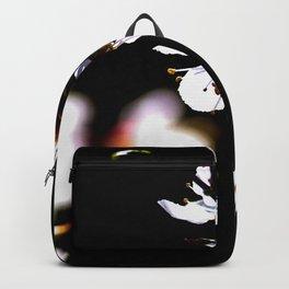 Beautiful Sunlit Japanese Apricot Flowers On Black Backpack