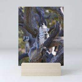 Lemur Howl Mini Art Print