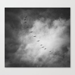SEARCHING FOR BLUE SKY Canvas Print