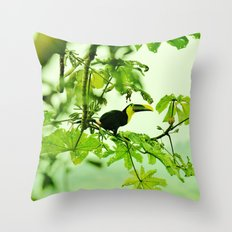 If I Can, Toucan Throw Pillow