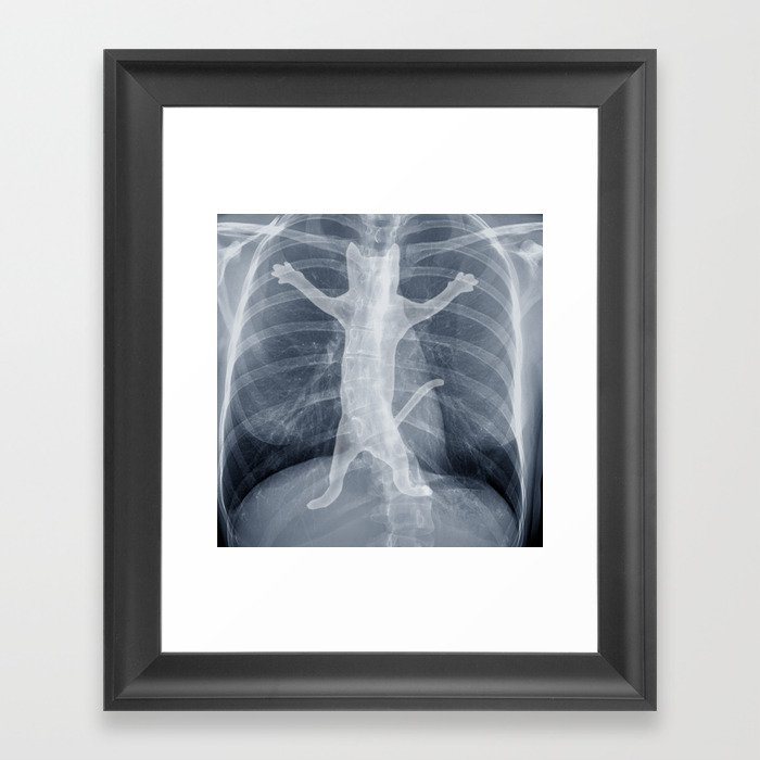 X Ray Framed Art Print By Tummaw Society6