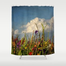 colored swords - field of Gladiola flowers Shower Curtain