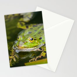 Green European Frog Stationery Cards