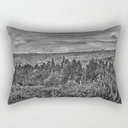 Ecuador Landscape Scene at Andes Range Rectangular Pillow