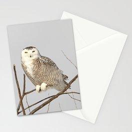 I spy with my yellow eye Stationery Cards