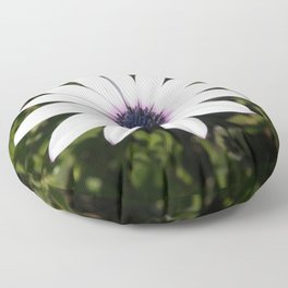 White African Daisy Floor Pillow