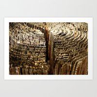 tree rings Art Prints featuring Tree Rings by tracy-Me