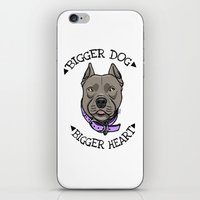 pitbull iPhone & iPod Skins featuring Pitbull by pixxelr