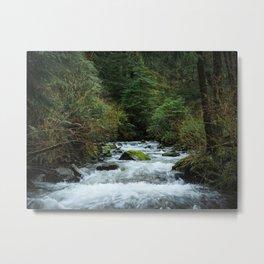 Neahkahnie Creek Cascades Metal Print
