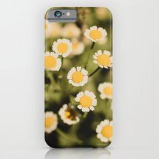 Little bits of sunshine iPhone 6s Slim Case