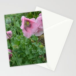 Poppies in rain Stationery Cards