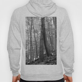 Old love, black and white photography trees Hoody