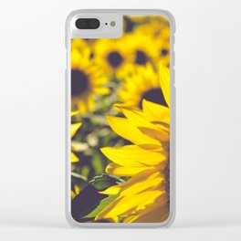 Summer Sunflower Love Clear iPhone Case