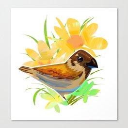 Daisy sparrow Canvas Print