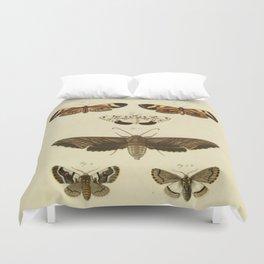 Vintage Moths Duvet Cover