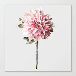 All The Pretty Flowers No. 2 Canvas Print