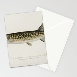 Pickerel (Lucius Reticulatus Le Sueur from a pond in Massachusetts) illustrated by Sherman F Denton Stationery Cards