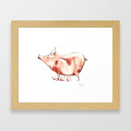 Sow Framed Art Print