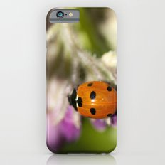 Ladybird in Spring Slim Case iPhone 6s