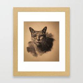 Nimbus Framed Art Print
