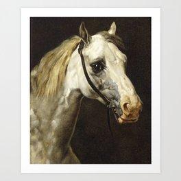 Head of a Piebald Horse by Théodore Géricault Art Print