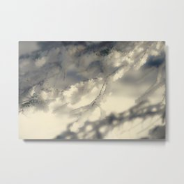 Snowy Spruce Needles 13 Metal Print